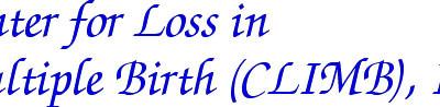 Center for Loss in Multiple Births