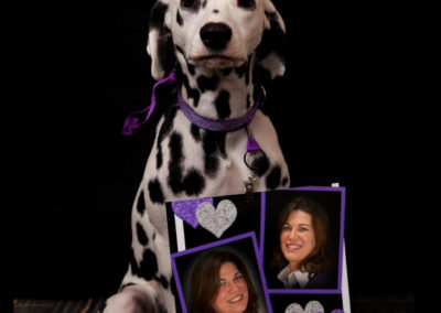 LOVE …from Holly the Dalmation
